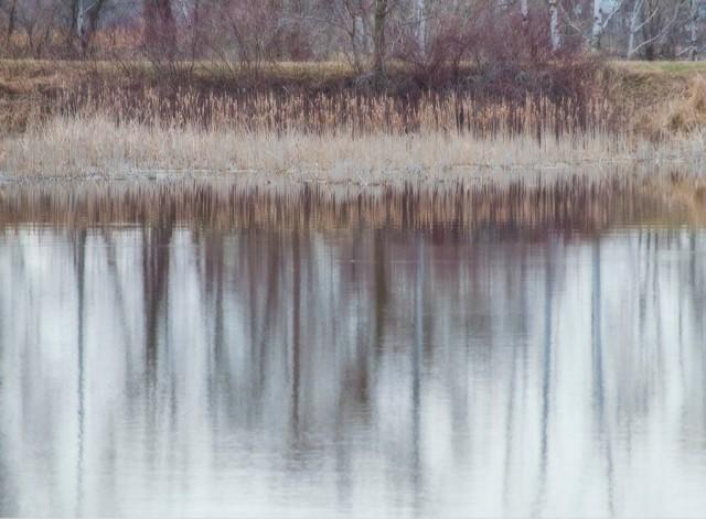 Fox River Princeton