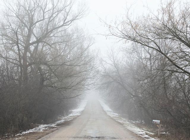20170228_fog_1252