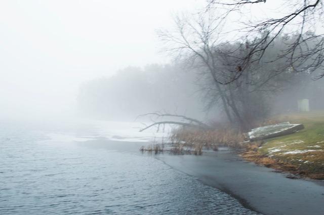 20170228_fog_1274